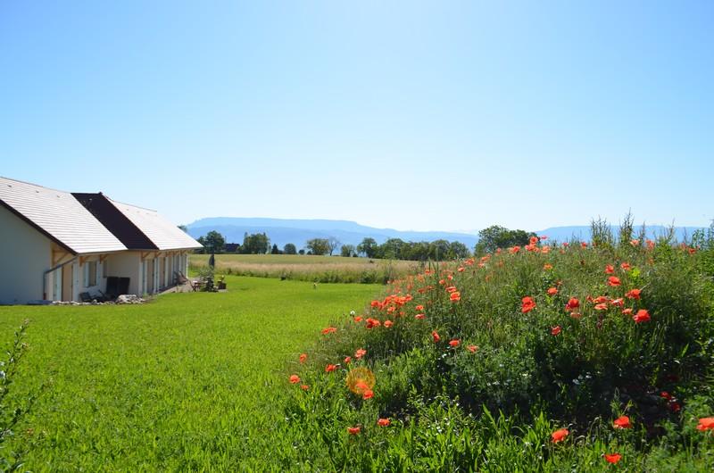 la-paumanelle-exterieurs-paysage