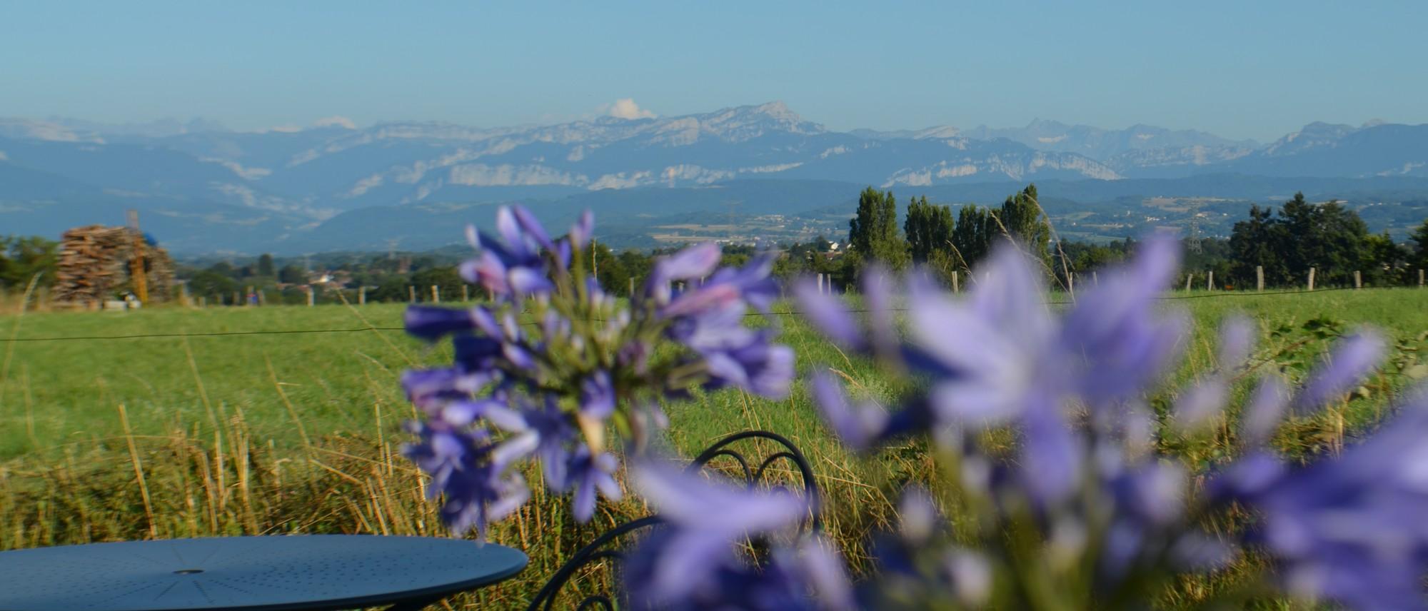 dolomieu-fleurs-vue-panoramique
